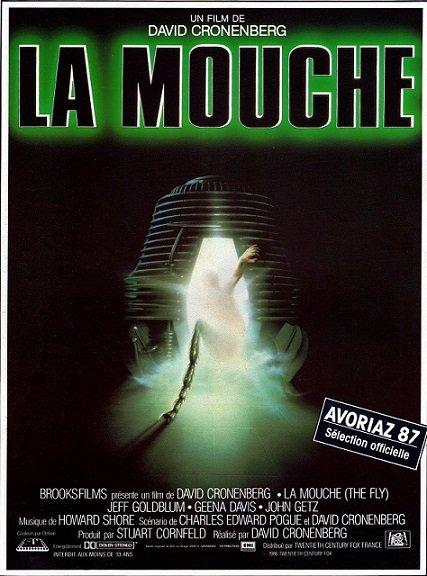 mouche1